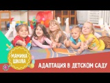 Адаптация в детском саду. Мамина школа 27.05.2017