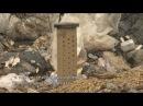 МУСОРНЫЙ ГАЗ энергия из отходов / Biogas from waste energy from nothing