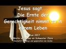 DIE ERNTE DER GERECHTIGKEIT NIMMT ZU IN EUREM LEBEN ❤️ Liebesbrief von Jesus vom 4 Juni 2017