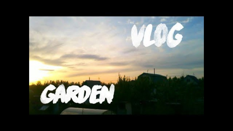 Mini VLOG from garden♥