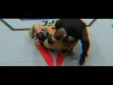 UFC  Тест