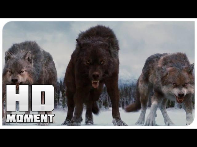 Финальная битва Сумерки Сага Рассвет Часть 2 2012 Момент из фильма