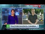 Расплескалась синева: пьяный напал на корреспондента НТВ в прямом эфире