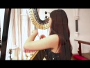J.S. Bach - Toccata and Fugue in D Minor BWV 565 - Amy Turk, Harp