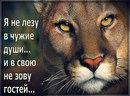 Евгений Воробьев фото #6