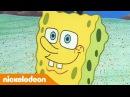 Губка Боб Квадратные Штаны 1 сезон 5 серия Nickelodeon Россия