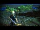 Path of Exile Зелёные крылья