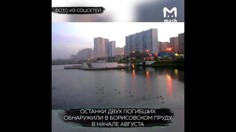 Полиция задержала банду черных риэлторов в Москве
