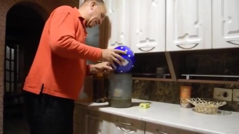 Как вырастить много белых грибов дома на подоконнике (1)