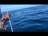 Безумец прыгает на акулу!