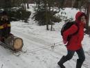 Лидочка везёт дрова из леса.