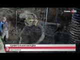 Череп и бивни мамонта нашли в Мичигане при прокладке трубопровода