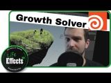 Houdini Growth Solver Tutorial | Lets VFX #6