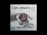 Eisenwut - 5 Jahre (L'Ame Immortelle tribute)