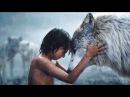 Книга джунглей / Jungle Book - один из первых цветных полнометражных приключенческих фильмов