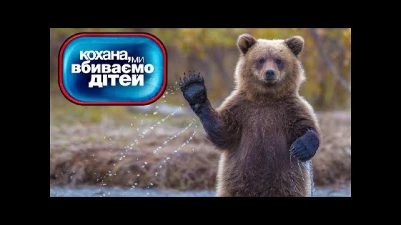 Медведь обосрался, самый СМЕШНОЙ выпуск ► Дорогая мы убиваем детей ◓ Семья Данченко ► 7