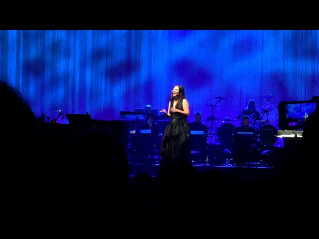 Evanescence: Synthesis LIVE @ Toyota Music Factory, Irving, TX 10/22/17 - 9) Hi-Lo