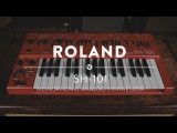 Roland SH-101 Monophonic Analog Synthesizer Reverb Demo Video