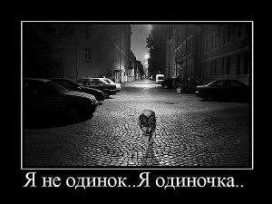 Вадим Кобзев, Волгоград - фото №1