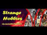 Мультфильм Робин ГудНочь страха (4 части)Ниндзя в логове драконаДух мщенияОко за окоМоя собачья жизнь