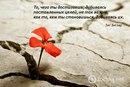 Ксения Святненко фото #37