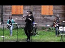 Дилетанты-Great Balls Of Fire (cover Jerry Lee Lewis)