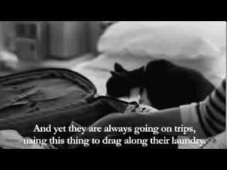 Henri 7 - The Cat is Sat