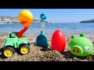 Angry Birds domuzu 🐽 denizde 🚜🚛 oyuncak KAMYONLAR ve KEPÇELER yardımıyla renkli yumurta gömüyor!