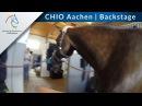 CHIO Aachen Backstage: Unterwegs mit Groom Lisa Fundis