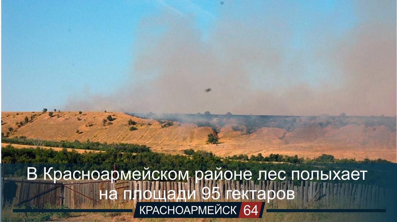 Площадь природного пожара в Красноармейском районе Саратовской области, который бушует уже несколько дней, достигла 95 гектаров.