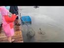 Маленькая рыбачка