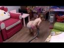 тот случай когда поели хлопья в комнате)))