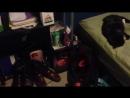 Как разбудить кота петардой