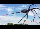 This Giant Octopus Kite Is Awesome