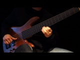 Six String Fretless Bass Solo &amp Ebow to R E L A X - Healing Sun