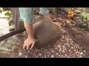 В Чувашии проходят геологические и археологические раскопки