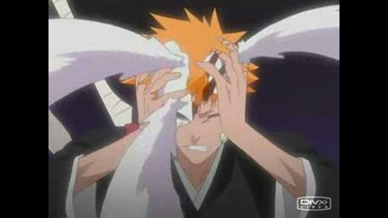 Ichigo/Hollow: The Bird and the Worm/The King and the Horse