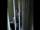 Vidmo_org_Arkadijj_Kobyakov_-_Snova_mrak_i_kholod_320.mp4