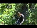 Пьяный Порошенко потерялся в лесу