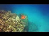 ilker kaleli M Quantic - Archipelago