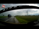 ДТП с лосем под Витебском попало на видео