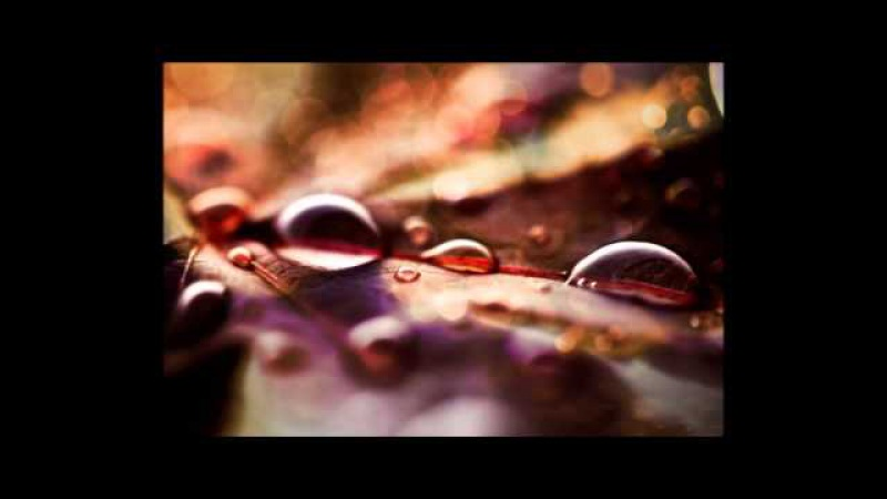 Beethoven - A melody of tears