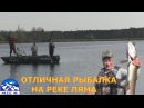 Рыбалка на реке Ляма Бешеный клёв щуки и окуня