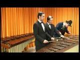 Manu Delago - 3 players on 2 marimbas