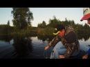 Заехали порыбачить на обычный деревенский пруд, а там