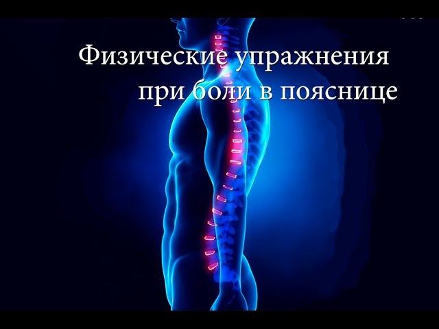 Физические упражнения при боли в спине abpbxtcrbt eghf;ytybz ghb ,jkb d cgbyt