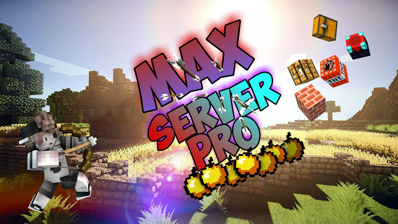 MAX SERVER PRO