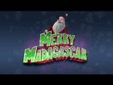 Рождественский Мадагаскар  Merry Madagascar (2009,мультфильм,США) Лицензия  HD720