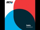Pakito - Accordion (Myz-xit)