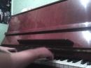 Лебединое озеро, ор.20,действие 2 Piano